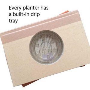 Planter-Carousel1