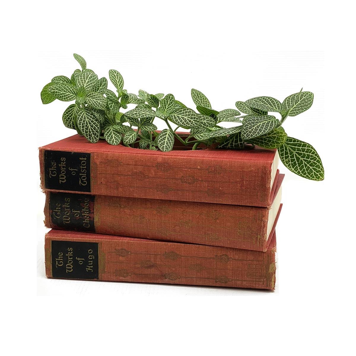 Vintage-Red-Planter1a