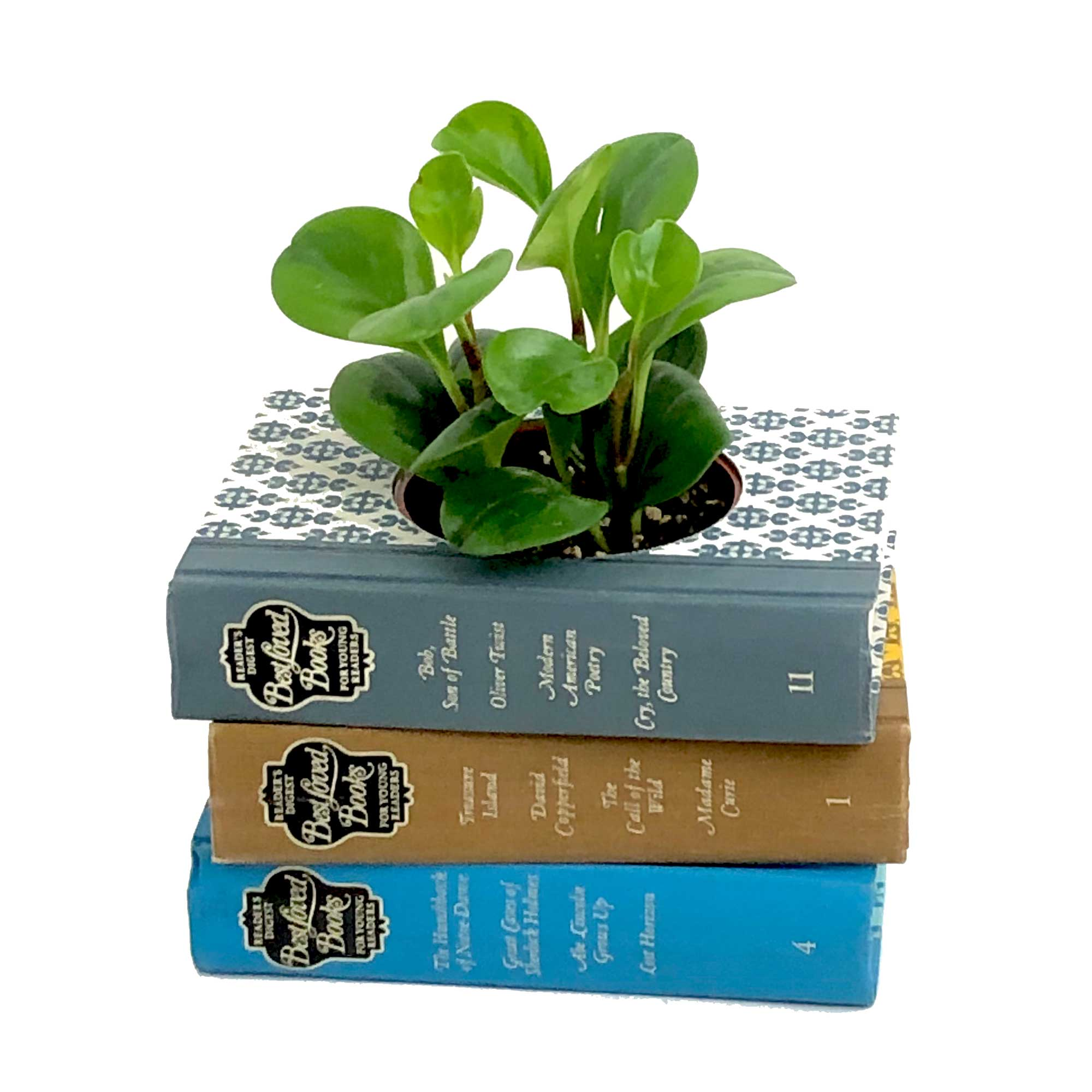 centerpieces-using-books
