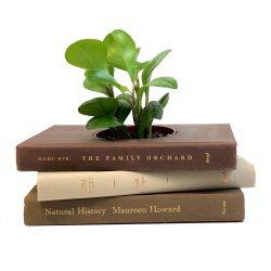 Neutral Colors Book Planter