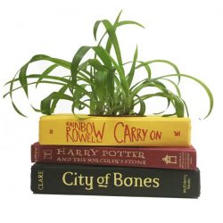 Young Adult Fantasy Book Planter