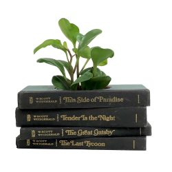 F. Scott Fitzgerald Book Planter