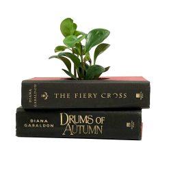 Diana Gabaldon Book Planter